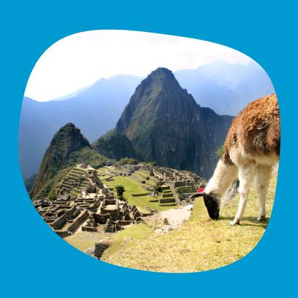 icono-agencia-de-viajes