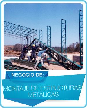 programas estructuras metalicas