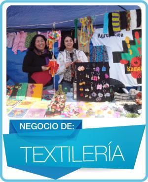 programas textileria
