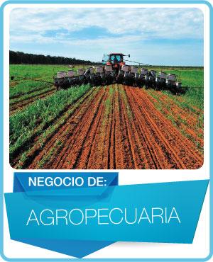 programas agropecuaria