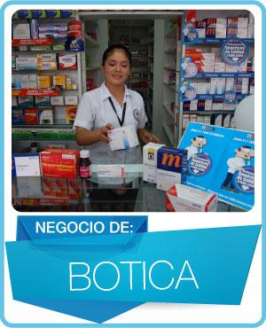 programas botica farmacia