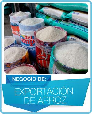 programas exportacion de arroz