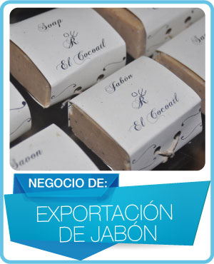 programas exportacion de jabon