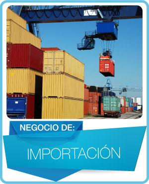 programas importacion general