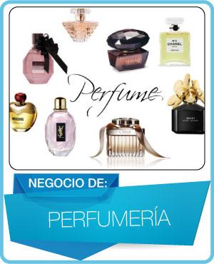 programas perfumeria