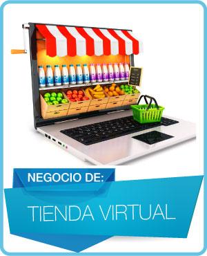 programas tienda virtual