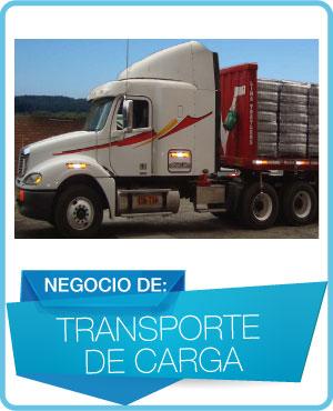 programas trasporte de carga