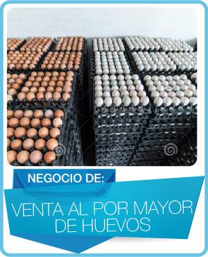 programas venta al por mayor de huevos
