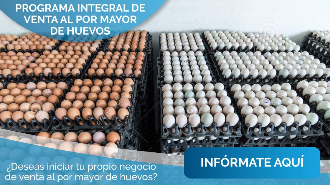 Venta al por mayor de huevos - MiEmpresaPropia 69d2f50abad9c