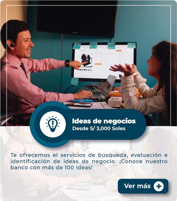 MEP: Ideas de negocio
